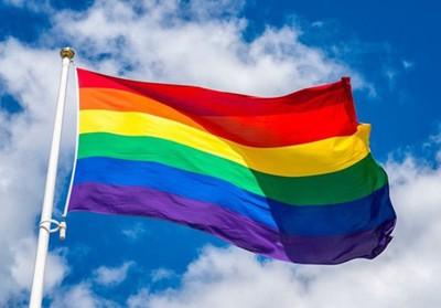Les Familles LGBT